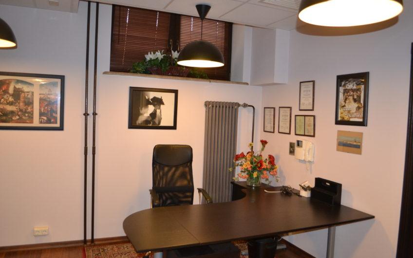 Представительский офис в стиле Art Deco
